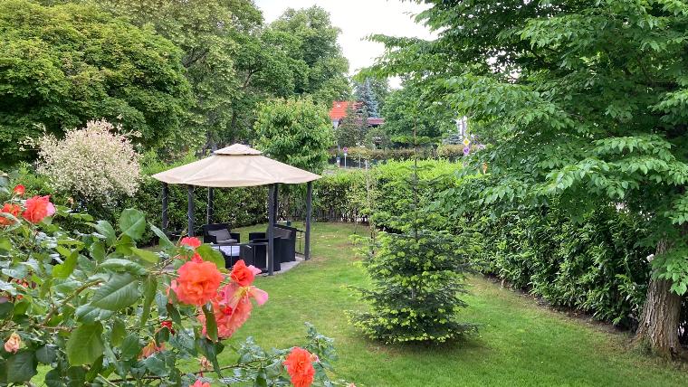 Regeneration visuell Blick aus dem Fenster in den Garten